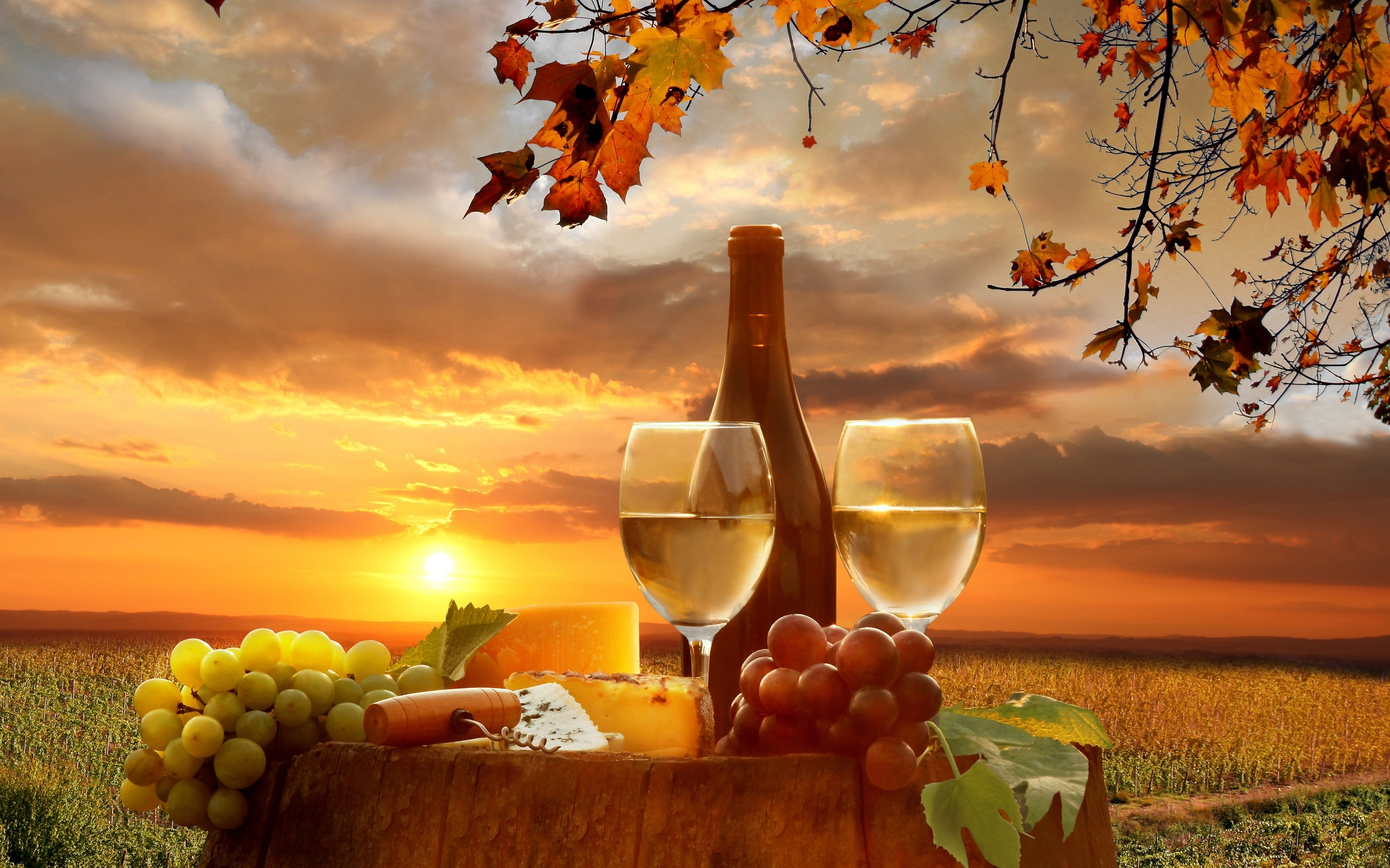Download Winery Wallpaper Gallery