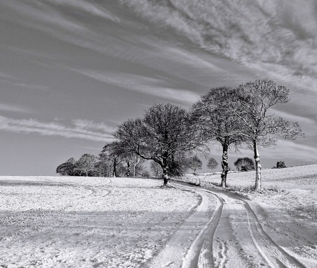 Black And White Winter Wallpapers And Stock Photos