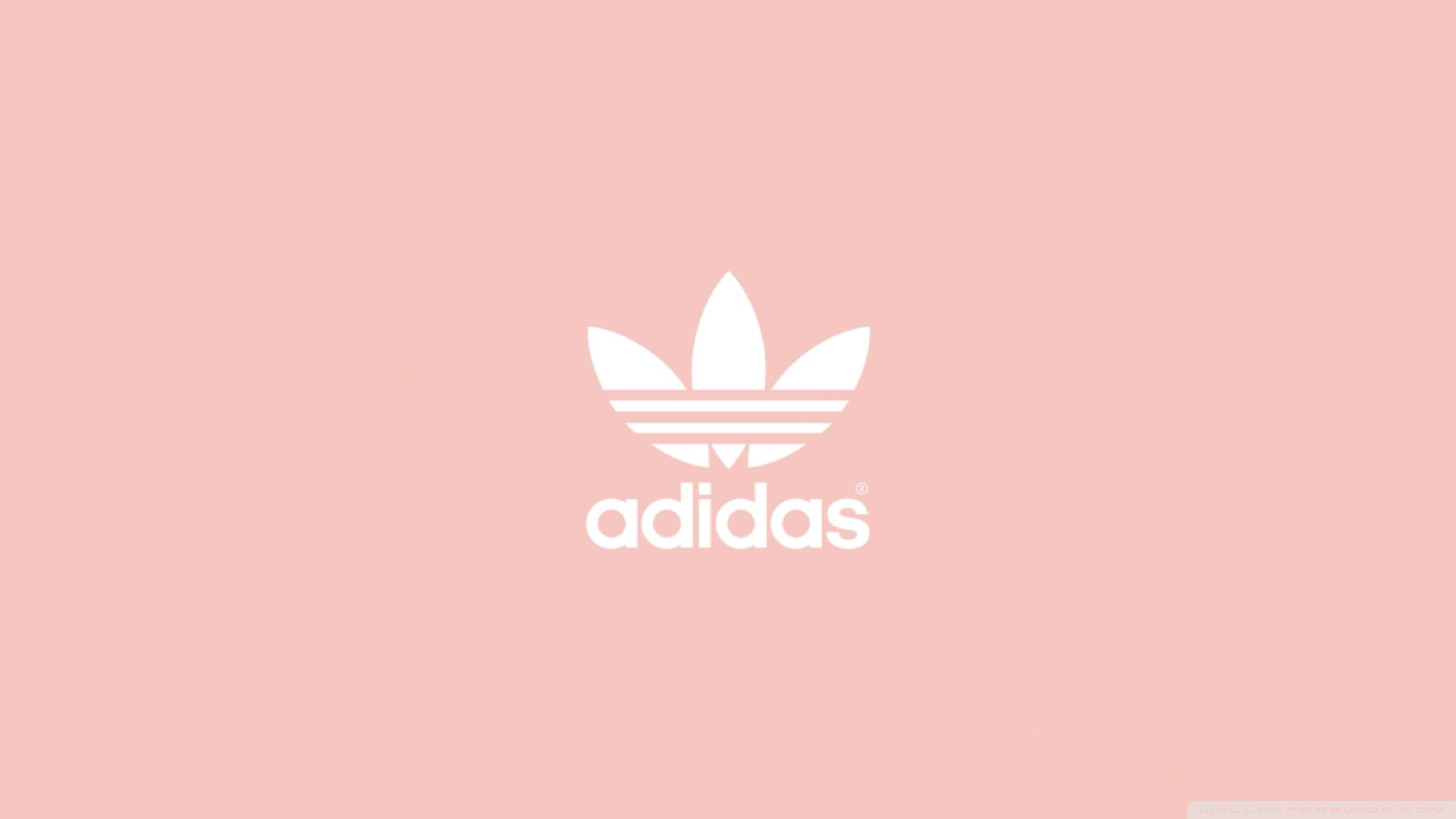 best service 8ace0 6ce14 Wallpaper Pink Pink Wallpaper Pink Adidas Adidas Wallpaper Adidas qnBzxA