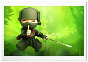 Mini Ninjas, Hiro