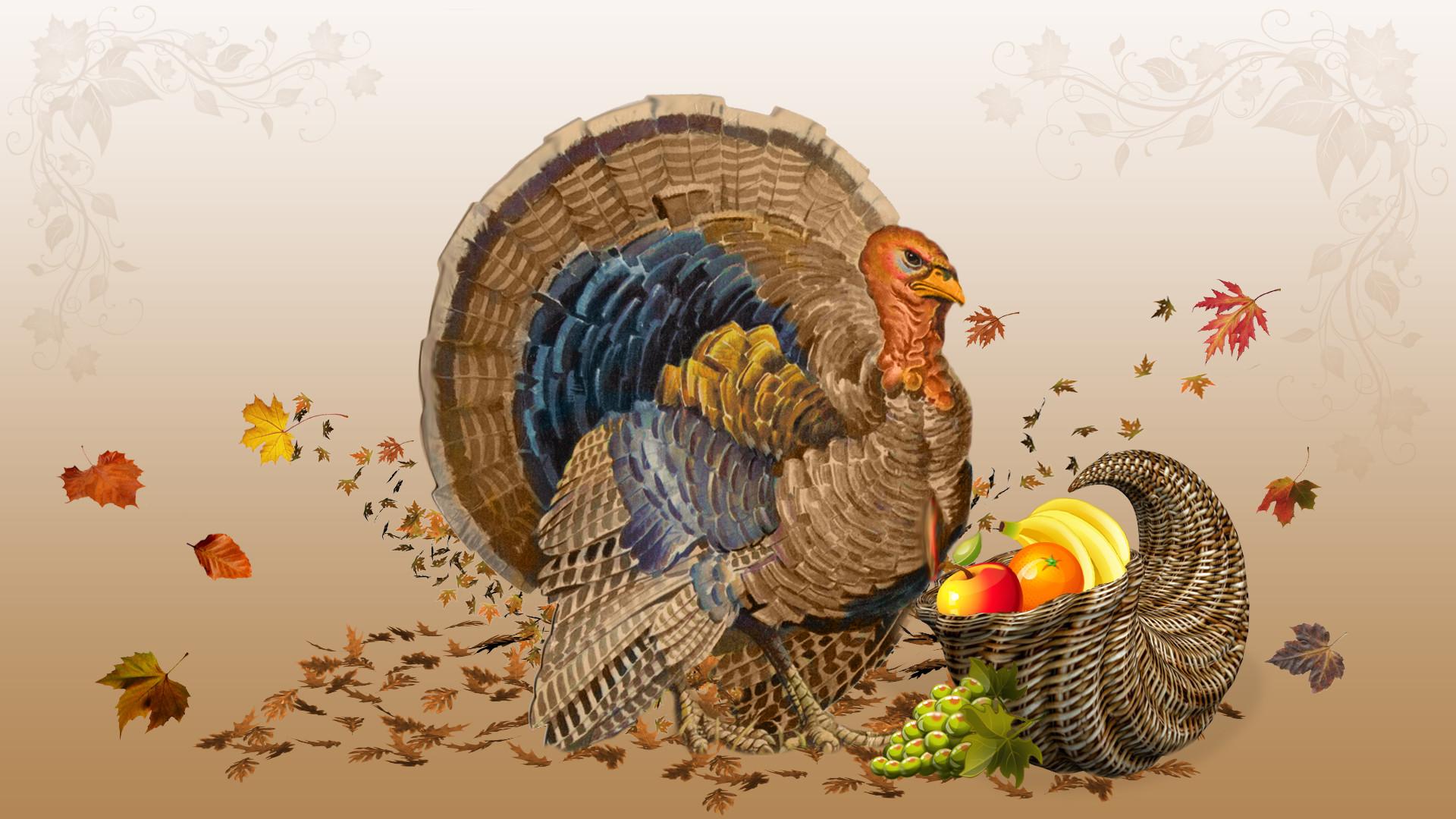 Cornucopia Thanksgiving Find Happy
