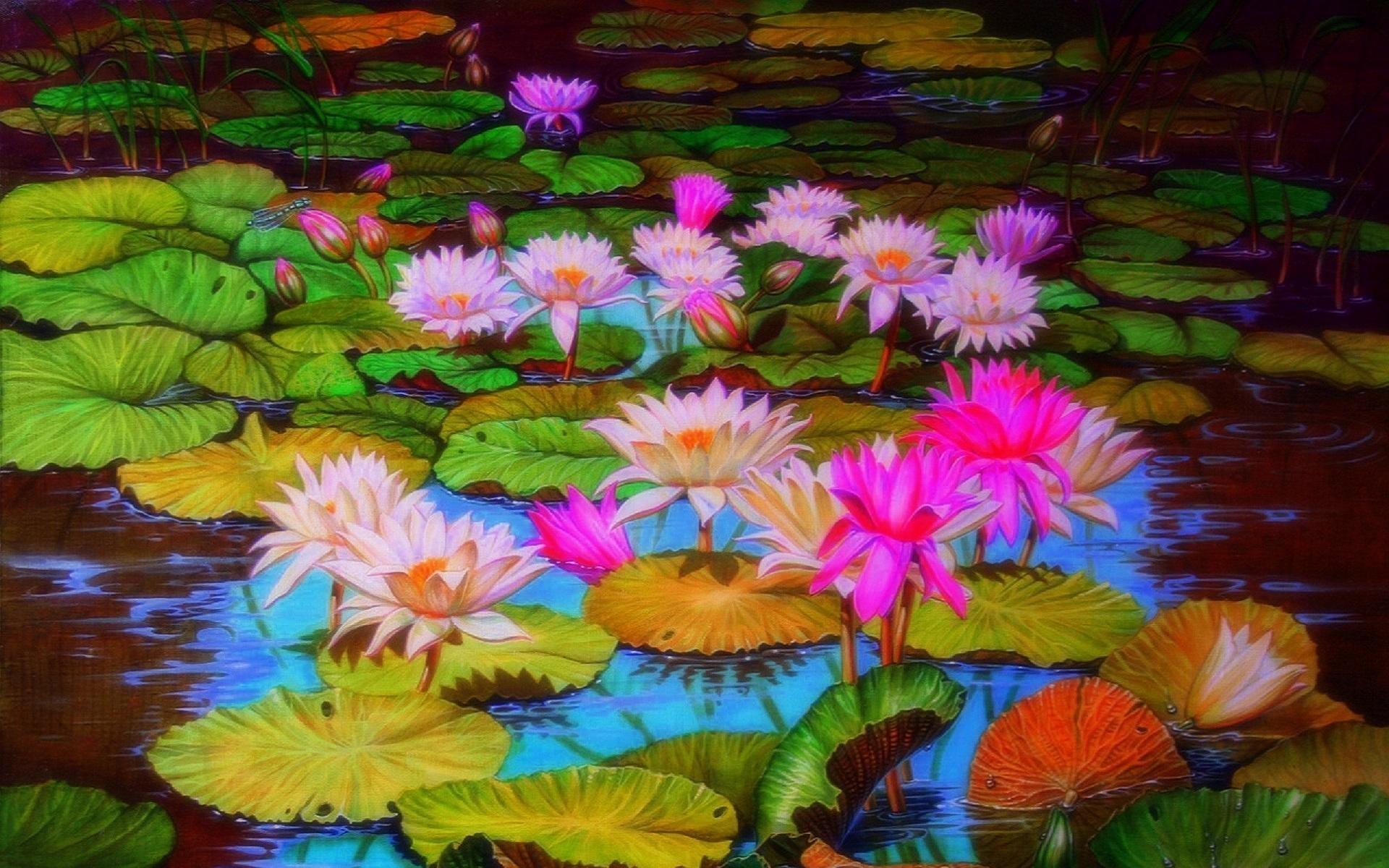 Best Floating Pond Plants