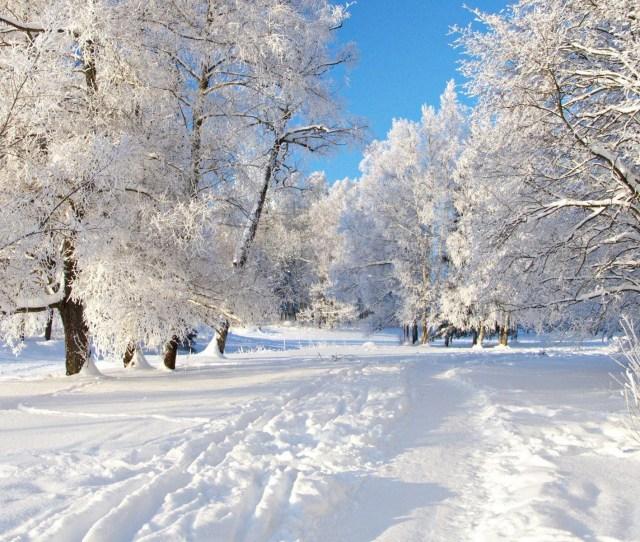 X Free Winter Desktop Wallpaper Download Winter Wallpapers