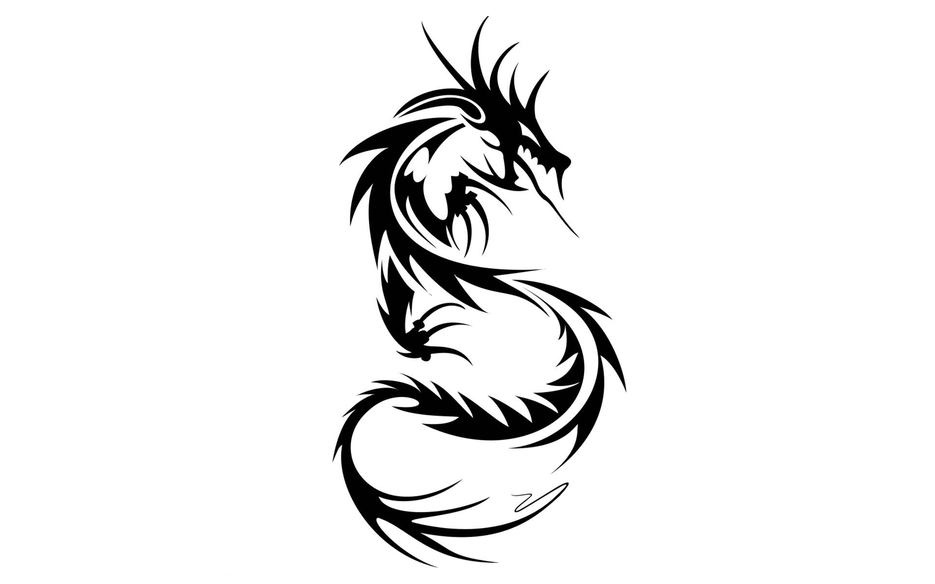 Dragon Tattoo Wallpaper Wallpapertag