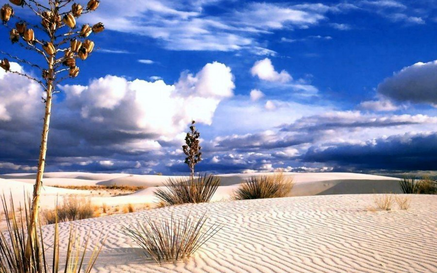 Desert Wallpaper Amazing Review World Visits