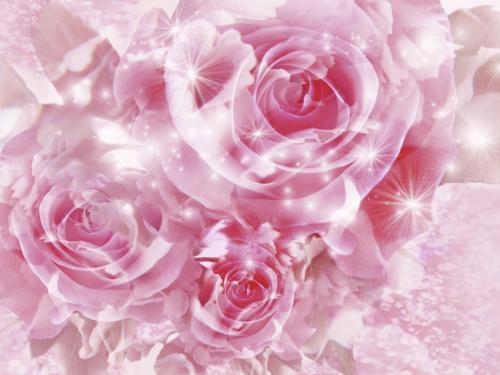 Beautiful 3D Wallpapers Top Ten Beaches Top Friends Pink Flower