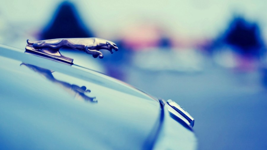 Jaguar Logo 1080p HD Wallpaper Car | HD Wallpapers Source