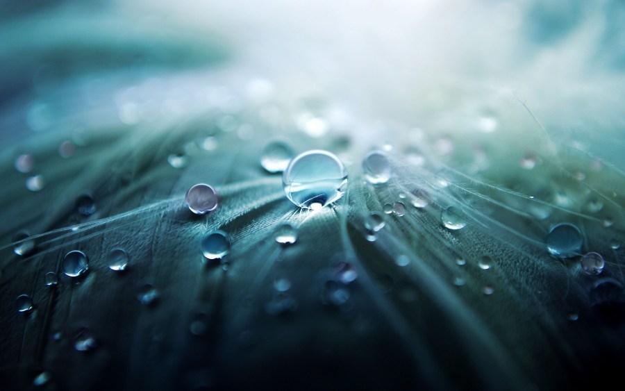 Animation - rain drops