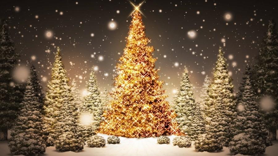 Christmas Tree Group