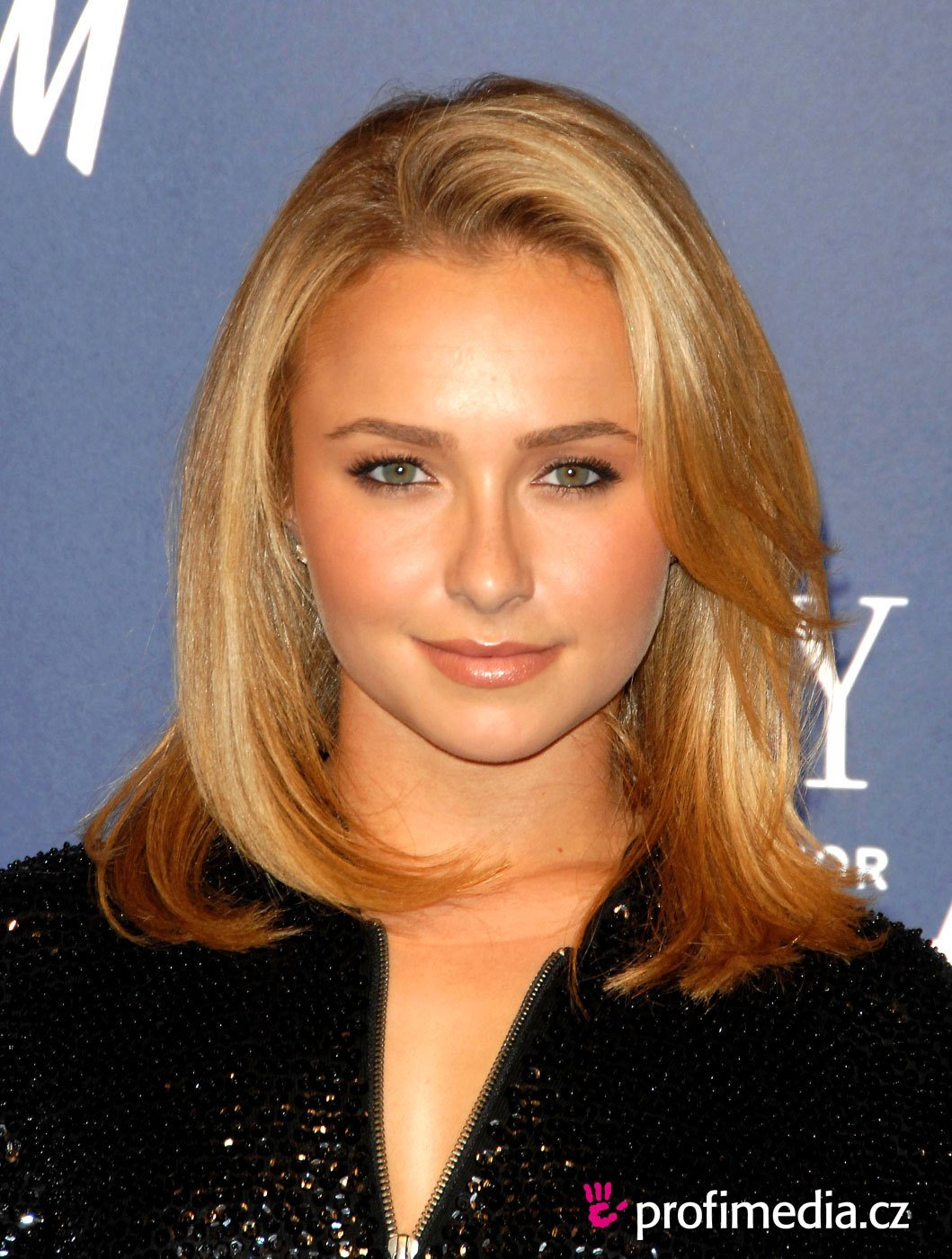 New Hayden Panettiere Hairstyle Easyhairstyler Ideas With Pictures
