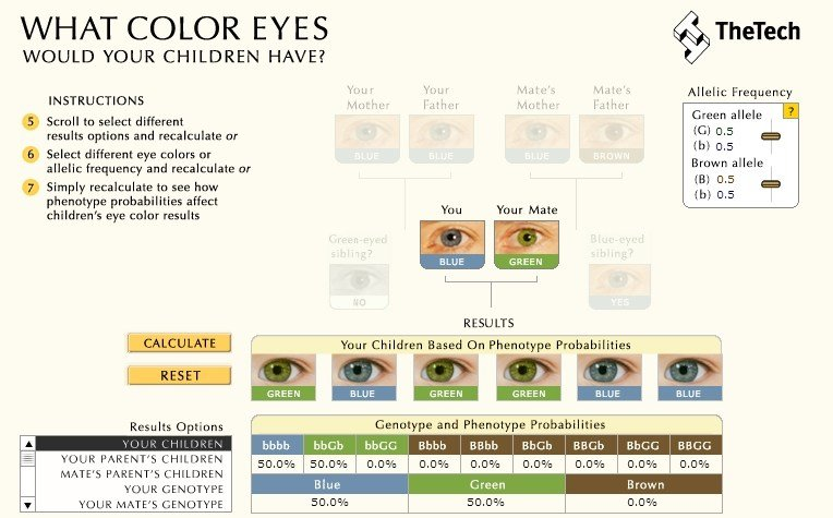 New 27 Good Hair Color Genetics Calculator Be72874 Haircolors Ideas With Pictures
