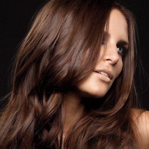 New Best 25 Chocolate Brown Hair Color Ideas On Pinterest Ideas With Pictures