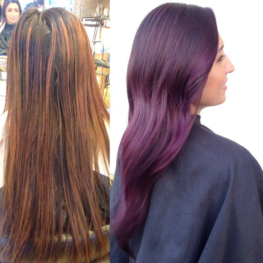 New Transformation Plum Color Melt Career Modern Salon Ideas With Pictures