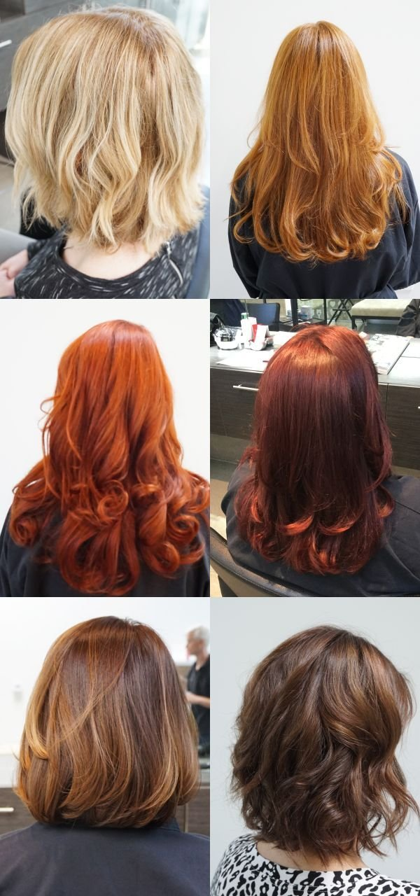New 25 Best Hair Color Quiz Ideas On Pinterest Ideas With Pictures