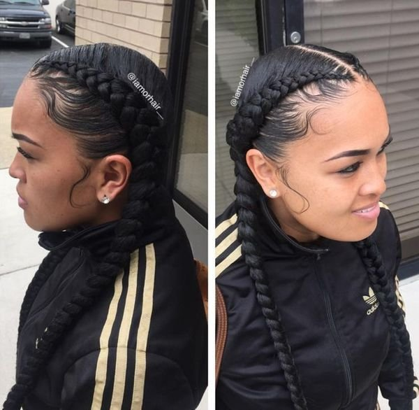 New Two Braids Hairstyles African American Hairstyling Ideas With Pictures