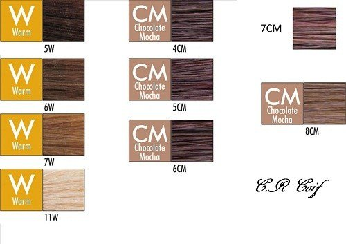 New Chi Ionic Permanent Shines Hair Color Marron Boutique Ideas With Pictures