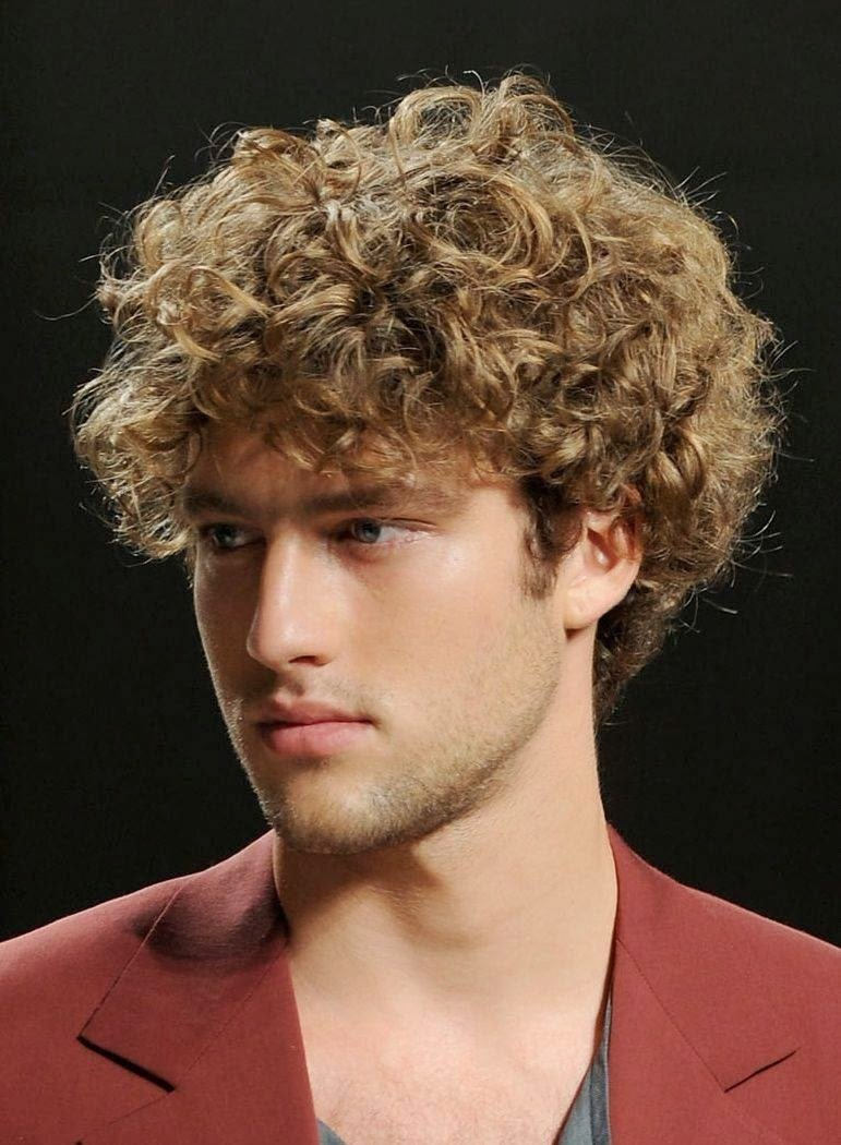 New Hairstyle 2014 Men S Curly Hairstyles 2014 Ideas With Pictures