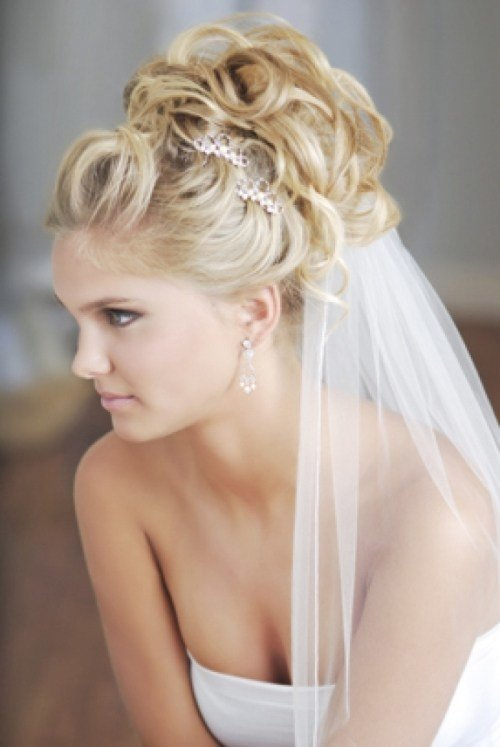 New Wedding Updos For Long Hair With Veil Di Candia Fashion Ideas With Pictures