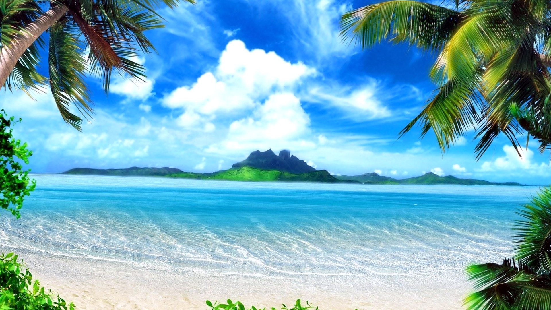 fantasy green beach nature wallpapers hd / desktop and mobile