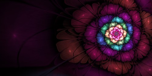 Image result for fibonacci sequence background