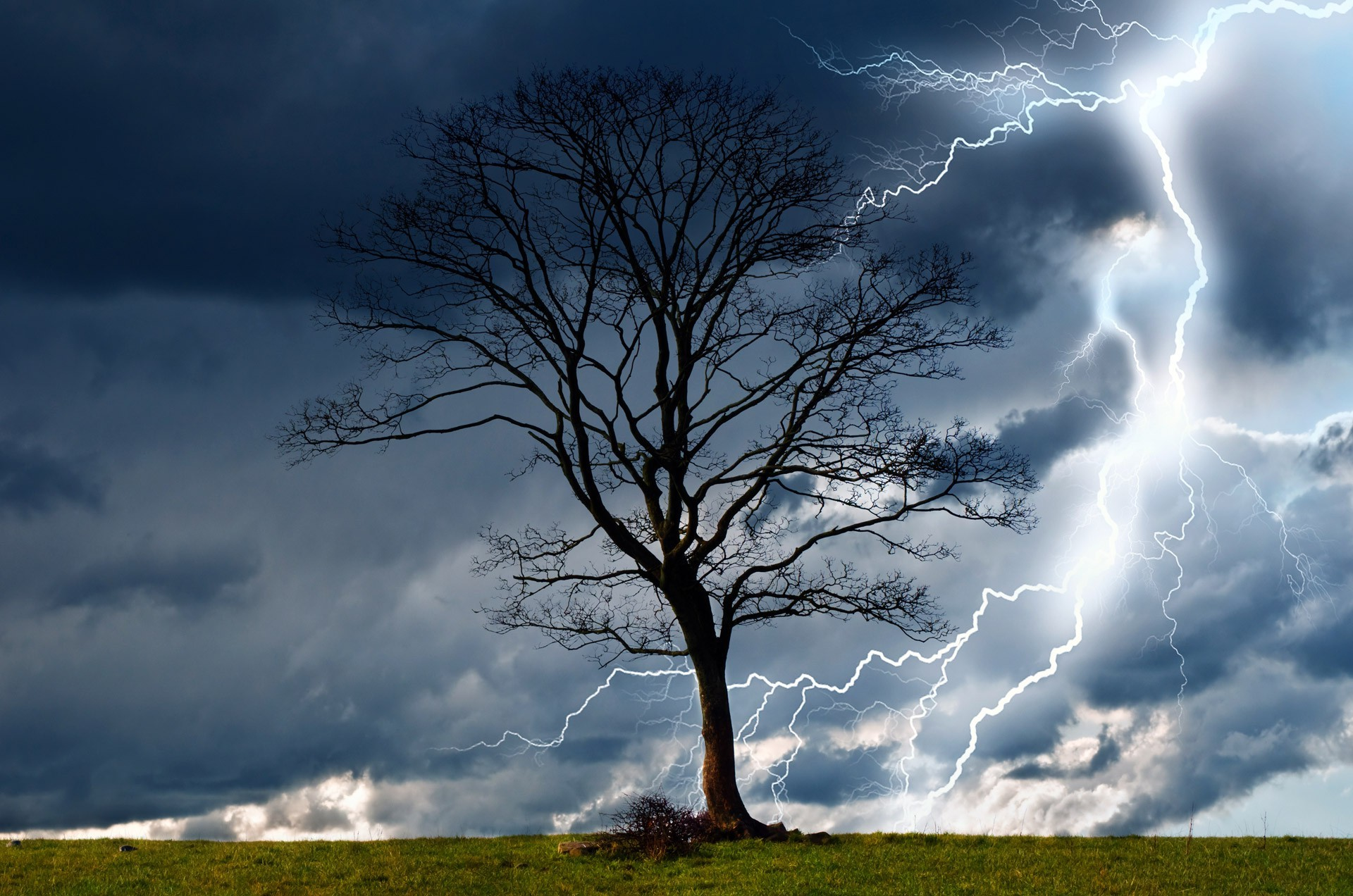Trees Storm Sky Lightning Rain Nature Dangerous