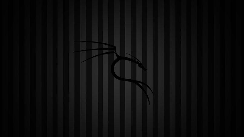 Kali Linux Black Hd Wallpaper | Babangrichie org