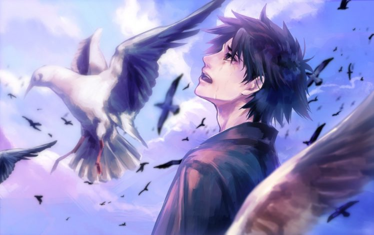 Anime Boy Cry Bird Clouds Sky Wallpapers Hd Desktop And Mobile Backgrounds
