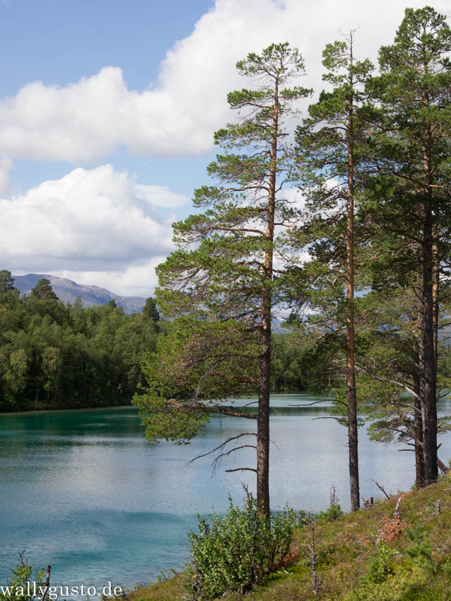 Schweden Jämtland 2014