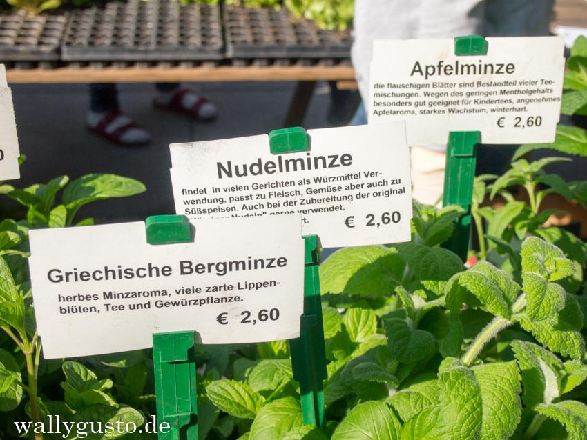 Nudelminze, Lendwirbel & Weltkulturerbe - ein Wochenende in Graz