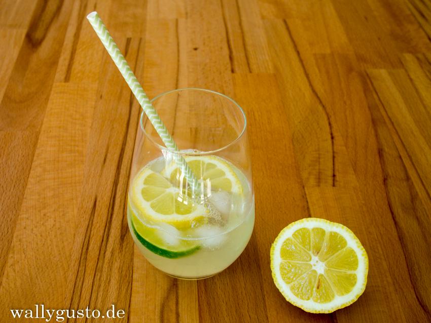 RezepteFürZwei_Zitronenlimonade