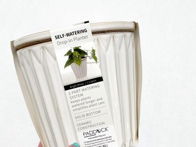 Paddock Home & Garden White Ceramic Self-watering Pot