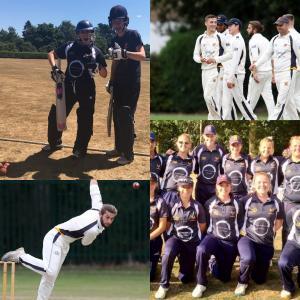 Summer Cricket