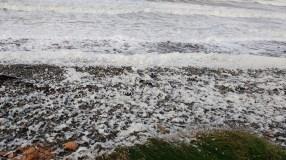 Sea foam Earnsy Bay 2 - Copy