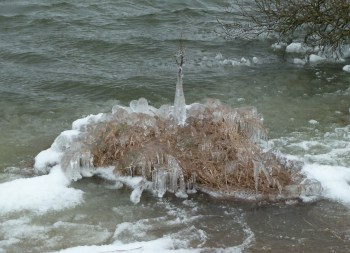 P1020256 Ice Sculpture - Copy