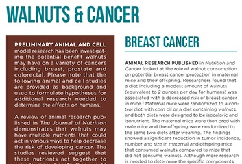 walnuts and cancer