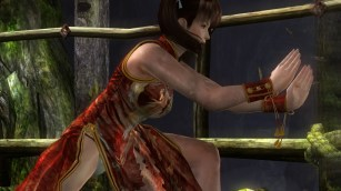 DEAD OR ALIVE 5 Last Round_20150312052634