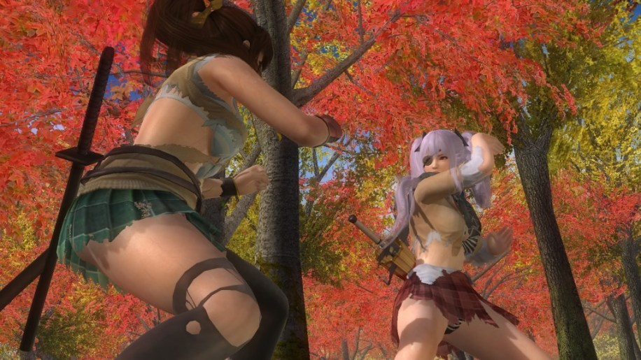 DEAD OR ALIVE 5 Last Round_20150325080441