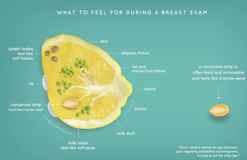 breast-cancer-awareness-check-up