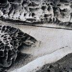 Landscape 17 by walter huber