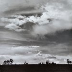 Landscape 28 by walter huber