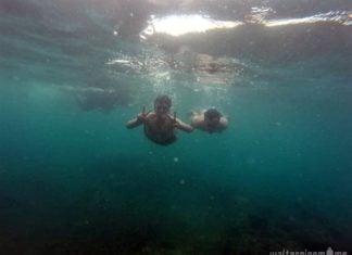 snorkeling di lagoon cabe gunung krakatau - 7