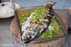 thai-steamed-fish-sea-bass