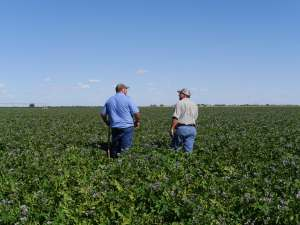 Walther Farms Farm Managers Outstanding in Field