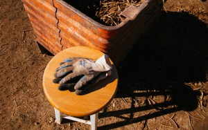 Walther Farms Work Gloves at Harvest by Rhino Media