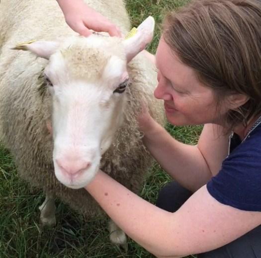 Josefin Waltin cuddling with a sheep