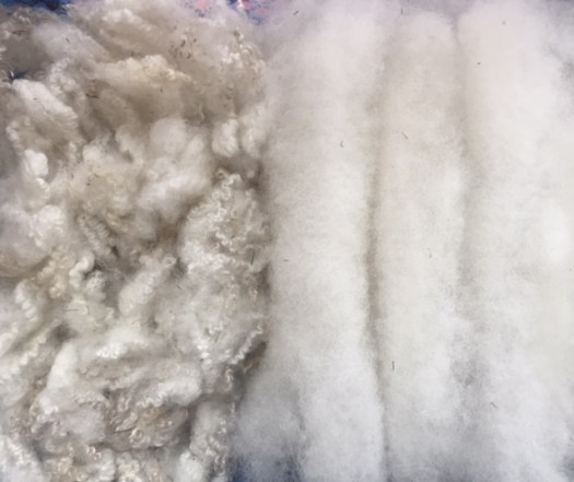 White crimpy wool on the left, carded rolags on the right