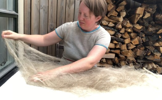 Josefin Waltin preparing to dress a distaff. The flax is spread out in an arch on the table in front of her.