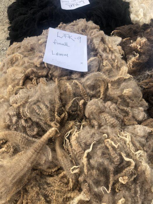 A fawn finewool fleece