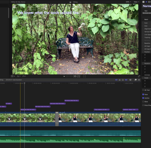 A screen shot of a video editing process