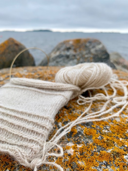 A knitting project on a rock by the sea.